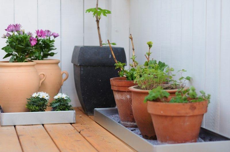 Shop plantekummer og plantekasser online